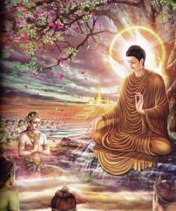 Tự Hào Là Con Phật  Với Nền Tảng Đạo Hiếu Cao Vời